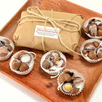Natural Fire Starters Macadamia Nut 6 Piece Set - Shipping Included