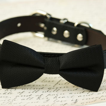 Black dog bow tie Collar- Leather dog collar - Pet wedding accessory
