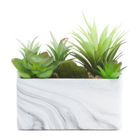 7in Faux Succulents In Marbled Pot - Living Room - T.J.Maxx