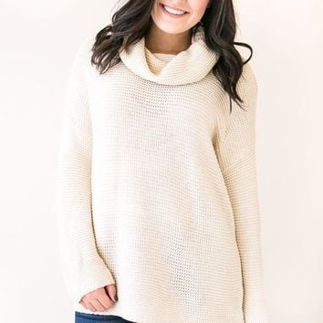 The Turtle and The Hare Beige Turtle Neck Sweater