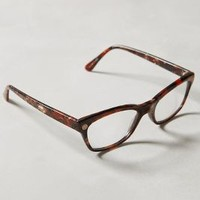 Speyeria Reading Glasses by Anthropologie Brown