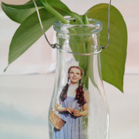 Wizard of Oz Dorothy Toto Vase Plant Root Starter Party Centerpiece Gift Jar Decor Wire Hanger