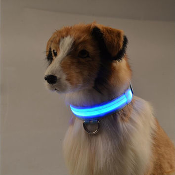 Shiny Pet Dog Collars Puppy Leads Pet LED Light Collars Mascotas Cachorro Large Dogs Luminous Neck Ring Harness
