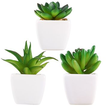 BESTOYARD 3pcs Mini Artificial Succulent Plants With White Ceramic Planter Pots For Home Table Birthday Decoration Gift
