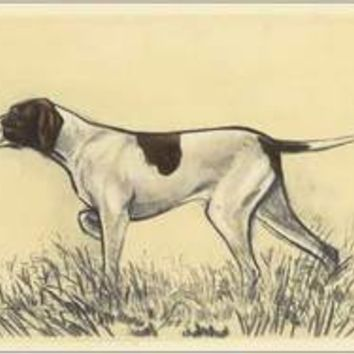 Hunting Dogs-Pointer