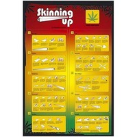 Drugs - How To Skin Up Poster - 91.5x61cm