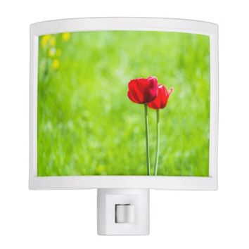 Two red tulip flowers night lights