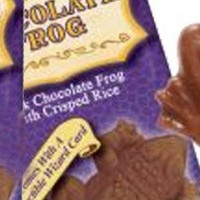 Harry Potter Chocolate Crispy Frog 2 Pack