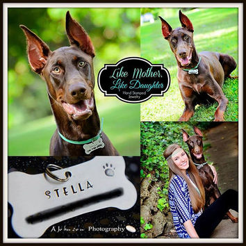 Hand Stamped Personalized Pet ID Tag - Aluminum Dog Bone - Dog Identification Tag