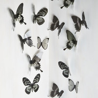 ModCloth Woodland Creature Flutter Free Wall Decor in Black