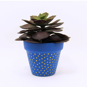 Terracotta Pot, Succulent Planter, Cute Planter, Small Pot, Blue Planter, Air Plant Holder, Succulent Pot, Indoor Planter, Gold Dots
