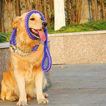 Braided Dog Collar and Leash
