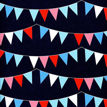 Banner Party Flags on Black Backdrop Printed Photography Background / 2345