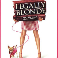 Legally Blonde The Musical 11x17 Broadway Show Poster