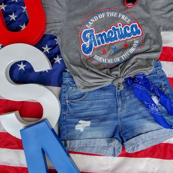 American Land of the Free Tee {Grey}