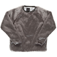 CANDY FUR CREW / GRAY