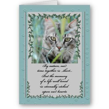 Pet Sympathy Loss of Cat Card from Zazzle.com