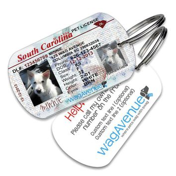 South Carolina Driver's License Pet Tag