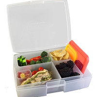 Bentology - Leak-proof Bento Lunch Box with 5 Removable Containers - Fruit / Multicolor