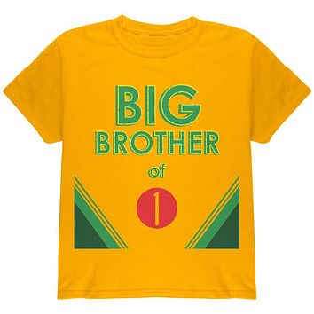Crayon Big Brother of 1 Youth T Shirt