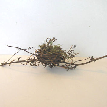 Bird's Nest Place Card Holder, Wedding Favor, Baby Shower, Bridal shower