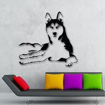 Wall Stickers Vinyl Decal Husky Dog Animals Pets Veterinary Unique Gift (ig1341)