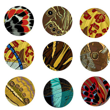 deco butterfly wing abstract patterns clip art digital download graphics collage sheet 1 INCH circles printable for pendants pins art crafts