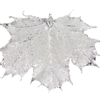 "Real Leaf Christmas ORNAMENT Sugar Maple 4"" Dipped in Sterling Silver"