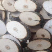 100 Bird-Cherry Tree Oval Wood Slices, Natural Bird-Cherry Oval Tree Slices, Natural Tree Oval Slices