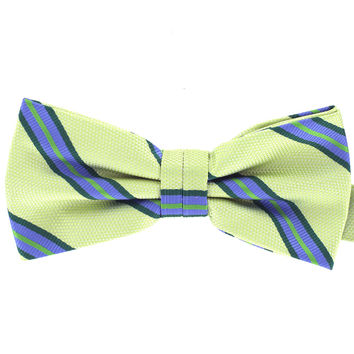 Tok Tok Designs Baby Bow Tie for 14 Months or Up (BK446)
