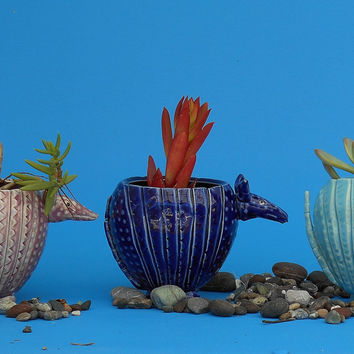 NEW Large Armadillo Planter, Whimisical Gift