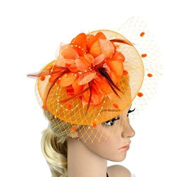 LATIMOON Womenrsquos Feather Mesh Fascinators Wedding Party Hats Hair Clip Headband Tea Party for Girls and Women