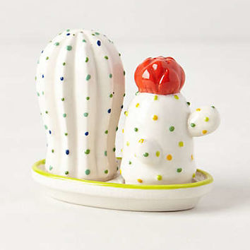 Cacti Salt & Pepper Shakers