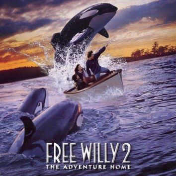 Free Willy 2 The Adventure Home 27x40 Movie Poster (1995)