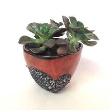 Porcelain Succulent Planter or Orchid Pot in Red & Black, Hand Built Porcelain Art Vessel, One of a Kind.  4.5 x 3.75 in. x 3.25 in. tall