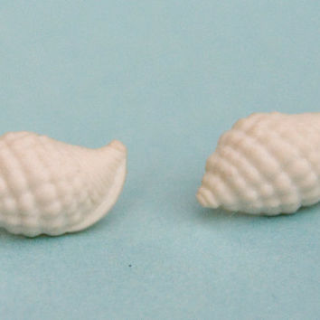 Yellow Shell Earrings 25% of this sale will go to Sea Shepherd Conservation Society