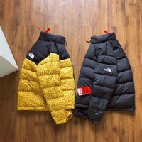 THE North Face Winter Down jacket S-XL
