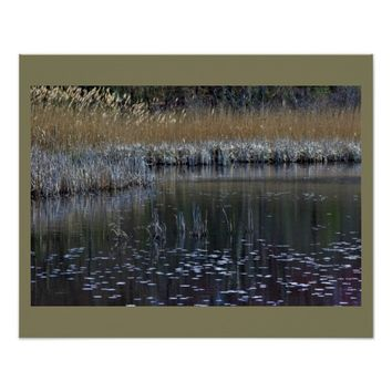 Water and Grasses Poster