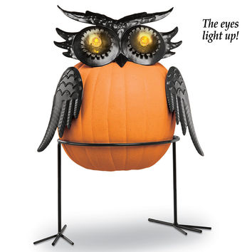 Owl Pumpkin Holder