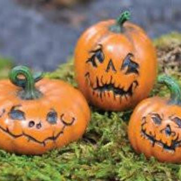 Fiddlehead Fairy Garden : Set of 3 Assorted Jack-O-Lanterns c/w pick