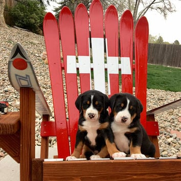 Ski Patrol/ Swiss Army/ Swiss Flag Hand Painted Adirondack Ski Chair