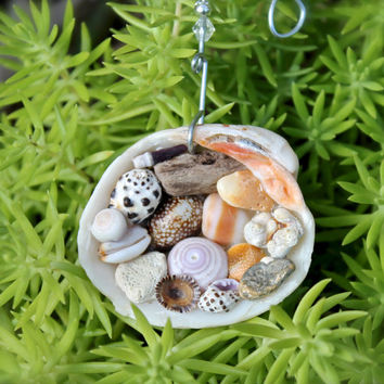 Seashell Christmas Ornament - Hawaii Christmas Ornament - Mele Kalikimaka - Hawaiian Shell Decor - Tropical Christmas Decoration from Hawaii