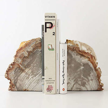Anthropologie - Petrified Wood Bookends