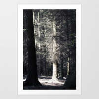 Tree Light Art Print by Jinzha Bloodrose