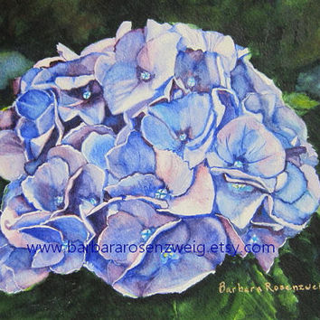 Blue Hydrangea Flower Art Print Painting, Hydrangea Garden Flower Watercolor, Flower Home Wall Decor Gift, Gift for Her, Barbara Rosenzweig