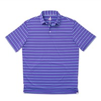 Eagle Prep-Formance Polo in Figg by Johnnie-O
