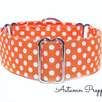 Orange Martingale Collar - Autumn, 1.5 Inch martingale, 2 Inch Martingale, greyhound martingale collar, italian greyhound collar, dog collar