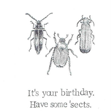 It's Your Birthday Have Some 'Sects Card | Funny Insects Bugs Nature Science Natural History Humor Nerdy Pun Weird Gothic Men Women