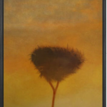 Sunset Tree art print imited edition signed giclee print Hahnemühle nature