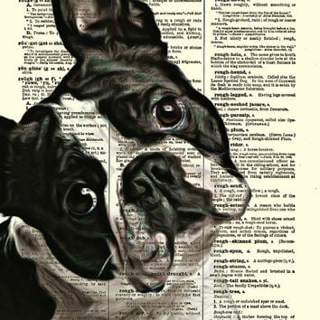 Boston Terrier Dictionary Art Print, Dog Print, Wall Decor, Art Print, Antique Dictionary Page Art, Home Decor